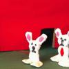 de två kaninerna